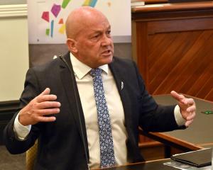 Clutha mayor Bryan Cadogan at Representation Commission hearings in Dunedin this week. PHOTO:...