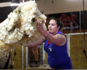 Pagan Karauria, of Alexandra, will return to Balclutha for the combined Otago shearing and 50th...