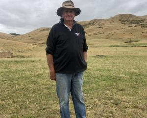 Merv King watches the Hilton-Gapes Valley dog trials from his former property. PHOTO: GEORGE CLARK