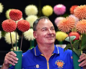 Dunedin Dahlia Circle president Wayne Burgess, of Waikouaiti, holds the joint winning entries in...