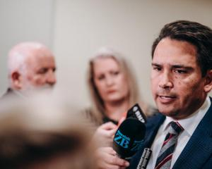 National leader Simon Bridges says he does not trust New Zealand First and the public could not...