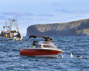Boats off the coast of Cape Saunders. Photo: Stephen Jaquiery