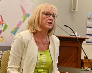 Waitaki MP Jacqui Dean makes her points at yesterday's Representation Commission hearing in...