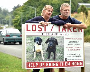 Louisa Andrew and Alan Funnell stand by the sign of their lost dogs yesterday. The sign has been...