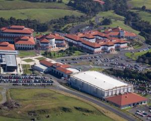 Massey University wants to stop offering science degrees at its Albany campus from the end of...