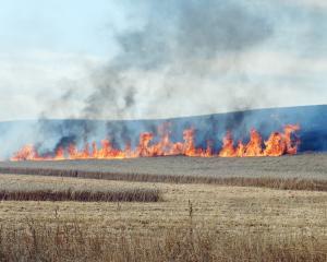 Flames leap skyward during a blaze at a farm near Kakanui in North Otago yesterday. Photo: Daniel...