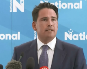 National Party leader Simon Bridges. Image: NZ Herald