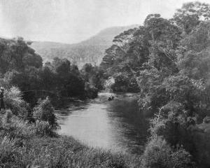 A picturesque view of the Tahakopa River, Catlins District, a spot favoured by anglers. — Otago...