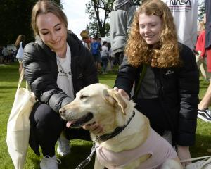 OUSA student support dog Ella, herself a rescue dog from South Africa, greets ecology and marine...