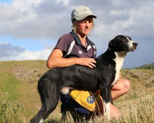 Mt Peel shepherd Jade Kelly and dog Hook have qualified for the New Zealand Sheep Dog Trialling...