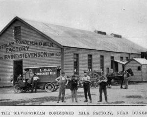 The Silverstream condensed milk factory, near Dunedin. — Otago Witness, 23.3.1920.   COPIES OF...