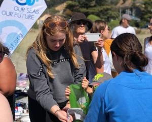 Volunteers cleaning up Sumner beach. Photo: Our Seas Our Future