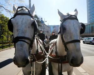 A Fiaker horse carriage waits for food packages for delivery in front of the InterContinental...