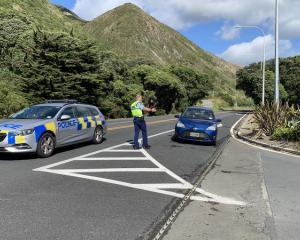 A police checkpoint at Paekakariki. Photo: Supplied via RNZ