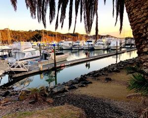 Whitianga Marina at sunset. PHOTOS: NEVILLE PEAT