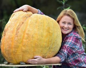 Growing giant pumpkins has recently brought a smile to the face of North Taieri beekeeper Heidi...