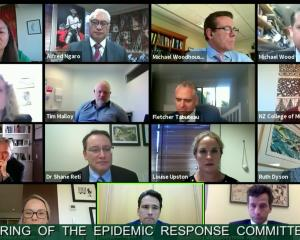 The Epidemic Response Committee sits on Wednesday. PHOTO: PARLIAMENT TV
