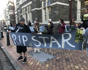 About 20 protesters gathered outside Dunedin District Court ahead of the sentencing. Photo: Tim...