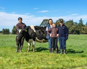 Mark Williams, wife Kelsey and children Addison and Reeve admire Mark's favourite A2 milker, 111....
