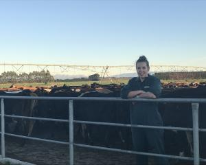Town to country ...Vanessa Robinson attributes her success to mentorship from Dairy NZ. PHOTO:...