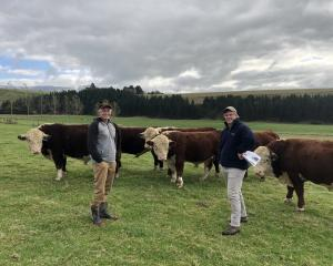 Physical inspection ... Paul Scott and PGG Wrightson's Cameron Gray ready for potential buyers....