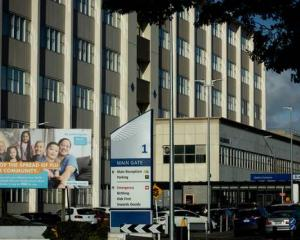 Two security guards were stabbed at Middlemore Hospital in May following a scuffle between a...