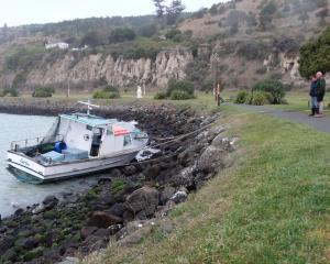 Sarita is tied in place with ropes at Oamaru Harbour yesterday afternoon, after it slipped its...