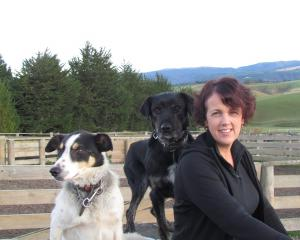 Gaye Cowie, of Tuapeka West, has added the Beef + Lamb New Zealand Southern South Island Farmer...