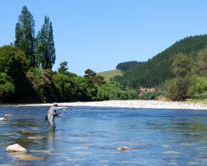 It is entirely due to Fish & Game that many of our finest rivers are now protected from...