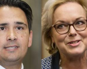 Simon Bridges and Judith Collins Photo: RNZ