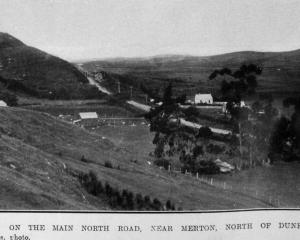 On the Main North Road near Merton, north of Dunedin. — Otago Witness, 6.7.1920. COPIES OF...