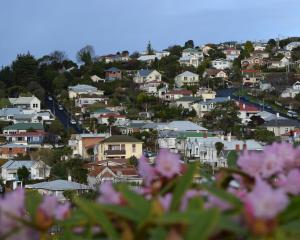 Residential house values in Dunedin have increased 18.9% in the past year. PHOTO: SHAWN MCAVINUE