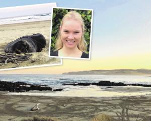 Sea Society founder Sian Mair, of Invercargill, is petitioning to ban vehicles from Caitlins...