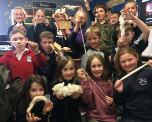 Mt Somers Springburn School year 4 and 5 pupils show the different stages of wool. PHOTO: TONI...