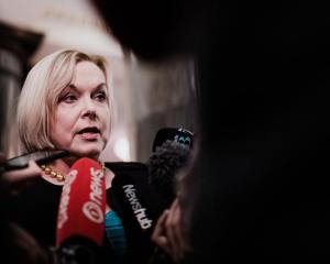 Judith Collins. Photo: RNZ