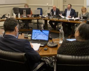 Dunedin Mayor Aaron Hawkins addresses Dunedin city councillors, Dunedin City Council staff and...