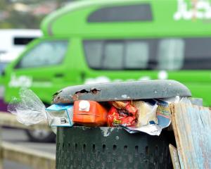 Overflowing rubbish bins at the designated freedom camping site in Macandrew Bay.