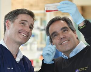James Ussher (left) and Miguel Quinones-Mateu at a University of Otago microbiology and...