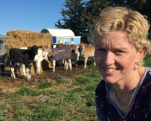 Rural Support Trust (RST) Mid Canterbury co-ordinator Frances Beeston. PHOTO: TONI WILLIAMS