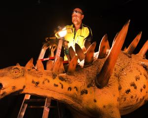 Otago Museum's Garry Gibson helps as museum staff set up an exhibition including this 8m-long...