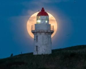 Full Moon at Taiaroa