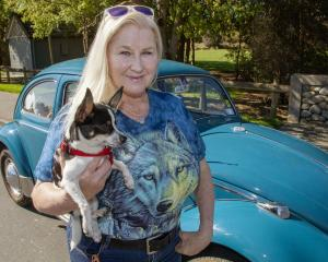 Henry the chihuahua is helping Debbie McCormick recover from the tragic death of her son Rupert....