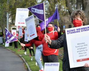 Nurse Marg Hamilton flies the flag at a New Zealand Nurses Organisation protest in Dunedin...