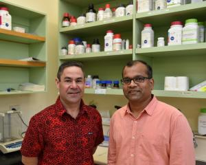 Associate Prof Daryl Schwenke (left) and Associate Prof Rajesh Katare. PHOTO: GREGOR RICHARDSON