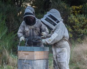 Dana (left) and Megan Young, of Tuapeka Honey, Lawrence, have given three hives to Waitahuna...