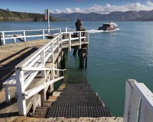 A floating pontoon may be added to the Diamond Harbour wharf. Photo: Newsline / CCC