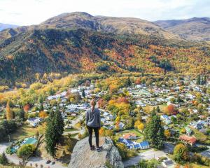 WINNER: This panorama of stunning autumn colours in Arrowtown was judged best picture. PHOTO:...