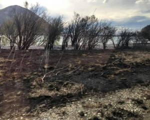 The fire has burnt through an area of 5032ha at Lake Ohau. Photo: Fenz