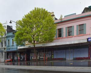 Empty Princes St buildings wait to be redeveloped. Photo: Gregor Richardson