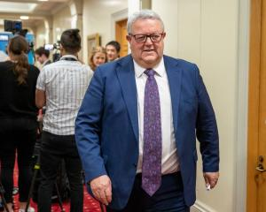 Gerry Brownlee. Photo: Mark Mitchell / NZH